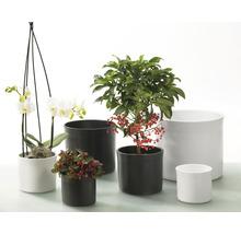Pot de fleurs Soendgen Miami céramique Ø 13 H 11 cm blanc-thumb-6