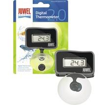 Thermomètre d'aquarium