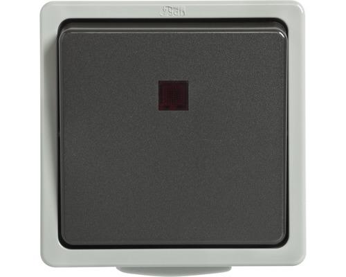 Interrupteur de commande/inverseur en saillie pour pièce humide gris clair/gris foncé
