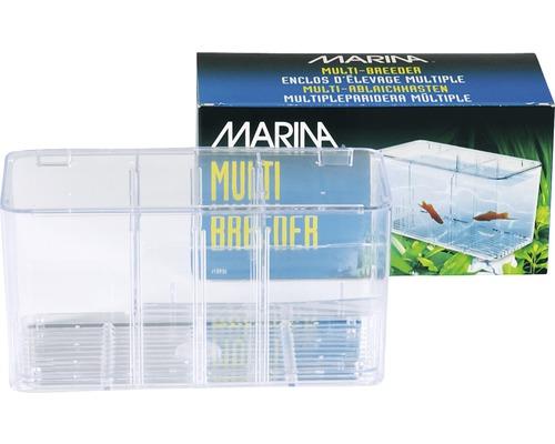 Bac de quarantaine Marina 5 en 1, 20,5 x 10 x 11 cm