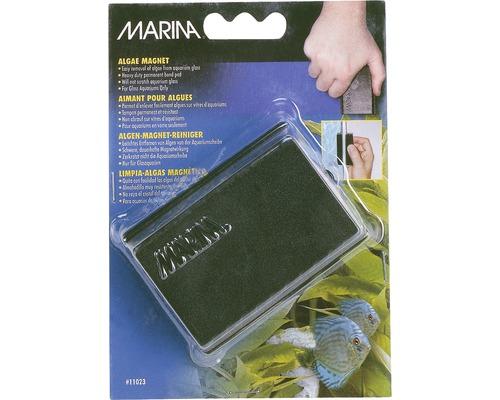 Aimant à algues Marina grand 8,3 x 6,2 x 3,2 cm