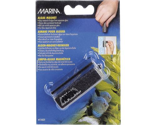 Aimant à algues Marina petit 6 x 2,6 x 3,5 cm