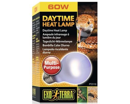 Exo-Terra Terrarium - lampe à lumière du jour Neodymium Sun Glo, 60 W