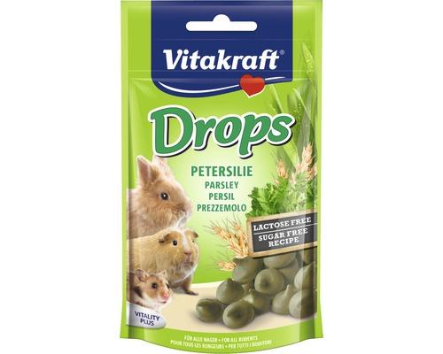 Snack pour rongeurs Vitakraft pastille persil, sans lactose, 75 g
