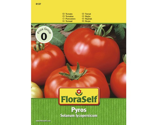Tomate Pyros Semences de légumes FloraSelf®