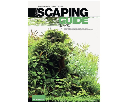 Aquascaping Guide Aquariengestaltung