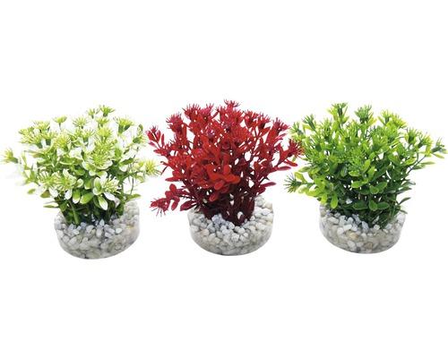 Plante en plastique Sydeco Nano Flwoering Bish 10cm, couleurs assorties
