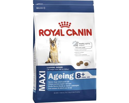 Hundefutter trocken, ROYAL CANIN SHN Maxi Ageing 8+, 3 kg
