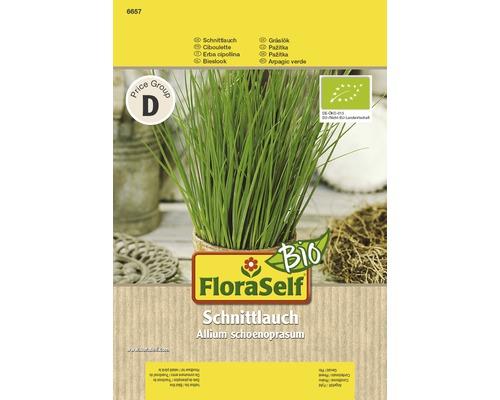 Ciboulette Semences de fines herbes FloraSelf Bio®