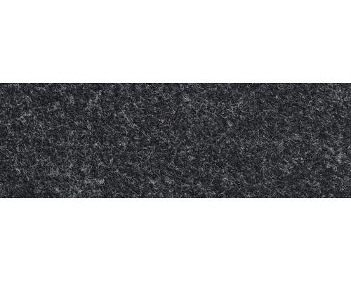 Teppichboden Nadelfilz anthrazit 200 cm breit (Meterware)
