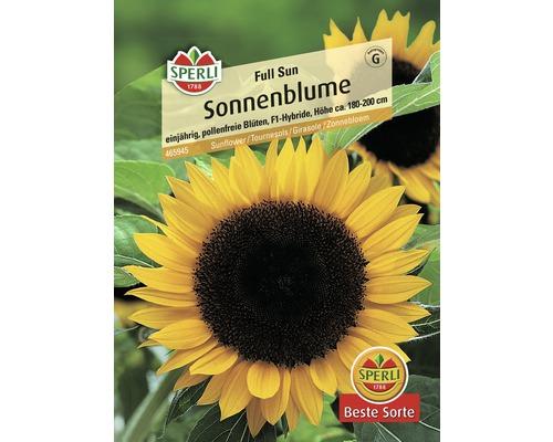 Tournesol ''Full Sun'' Sperli semence de fleurs