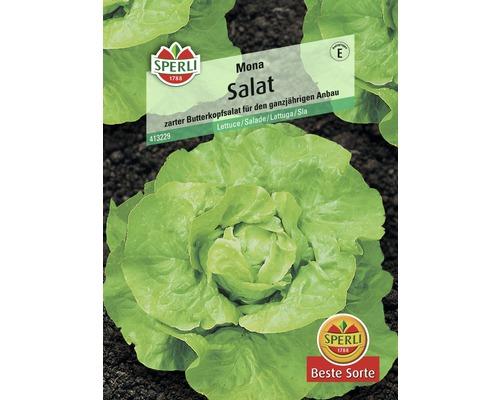 Salade ''Mona'' Sperli semence de salade
