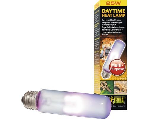 Exo Terra Terrarium - Ampoule Lumière du jour Daytime Heat, 25 W