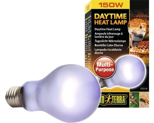 Ampoule lumière du jour Exo Terra Terrarium Daytime Heat 150 W