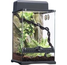 Ensemble terrarium Exo Terra Habitat de la Forêt tropicale Kit S-thumb-1