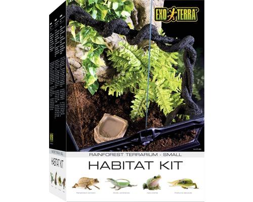 Ensemble terrarium Exo Terra Habitat de la Forêt tropicale Kit S