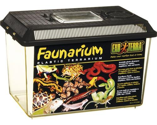 Récipient de transport Faunarium Exo Terra 30 x 19,5 x 20,5 cm