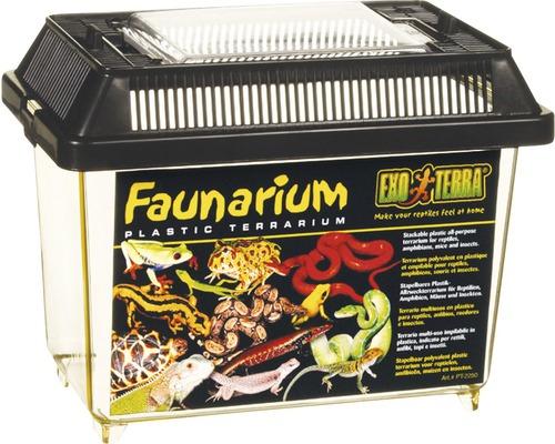 Récipient de transport Faunarium Exo Terra 18 x 11 x 12,5 cm