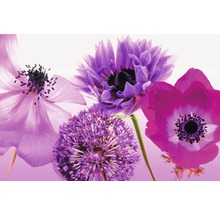 Poster Purple Summer 61x91,5 cm-thumb-0
