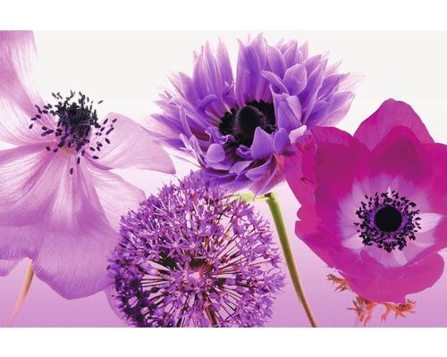 Poster Purple Summer 61x91,5 cm-0