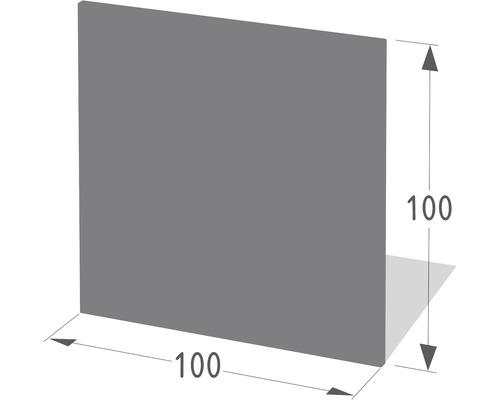 Pare-feu Lienbacher rectangulaire 100x100 cm anthracite
