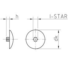 Caches gr. 30 pour empreinte étoile noirs en plastique 200 unités-thumb-1