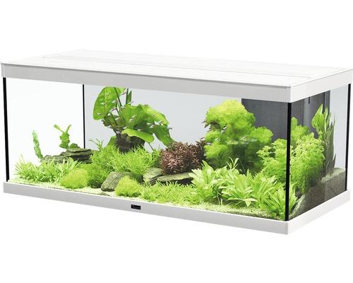 aquarium aquatlantis style led 100 x 40 cm sans sous meuble blanc