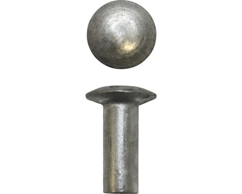 Blechnieten Set Linsenkopf Aluminium 50 Stück