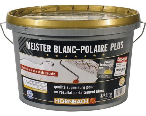 Peinture Murale Meister Polarweiß Plus 25 L Hornbach Luxembourg