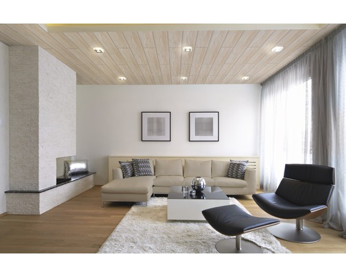 dekorpaneel quadro plus alaska birke 12x200x1200 mm - hornbach ... - Moderne Deckenverkleidung Wohnzimmer