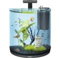 Aquarium Tetra AquaArt Explorer Line 60 l avec éclairage, chauffage, filtre sans meuble bas noir