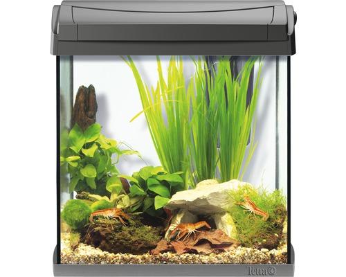 Tetra Aquarium AquaArt LED 30 l anthracite, sans armoire basse