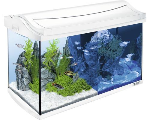 Tetra Aquarium AquaArt LED 60 L blanc, sans armoire basse