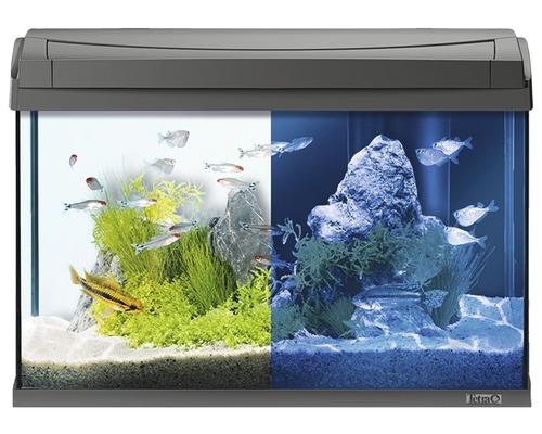Tetra Aquarium AquaArt LED 60 l anthracite, sans armoire basse