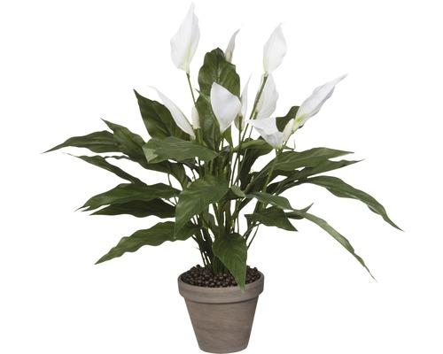 Plante artificielle Spathiphyllum, blanc