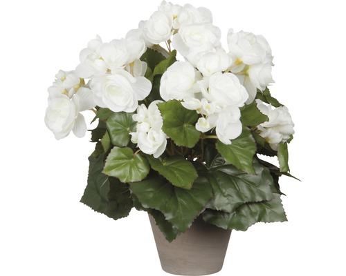 Fleur artificielle Bégonia, blanc