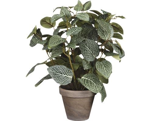 Plante artificielle Pilea, vert