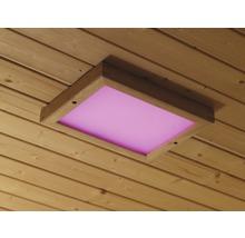 Ampoules de sauna et haut-parleur pour sauna