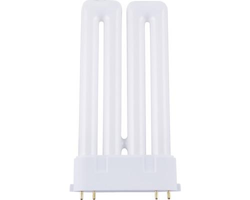 Ampoule à économie d''énergie 2G10/36W blanc neutre