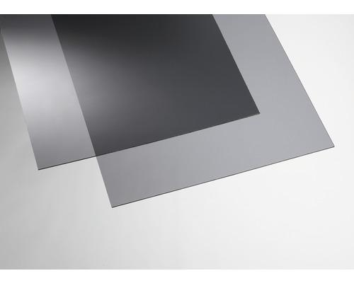 Plaque acrylique couleur 3x250x500 mm lisse grise