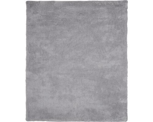 Tapis Shaggy Microfibres gris clair 80x150 cm