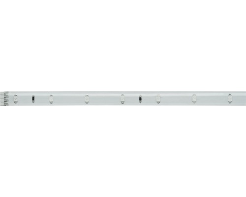 Bande YourLED IP44 97 cm 273 lm 6000 K blanc naturel 39 LED revêtu 12V