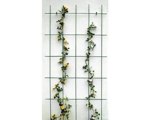 Treillis pour haie 75x150 cm, vert