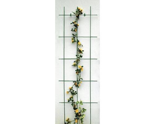 Treillis pour haie 45x150 cm, vert