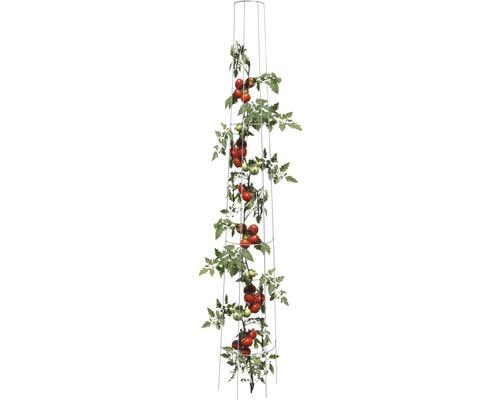 Treillis pour tomates rond 175 x 28 cm