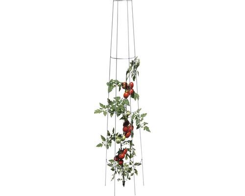 Treillis pour tomates rond 135 x 28 cm