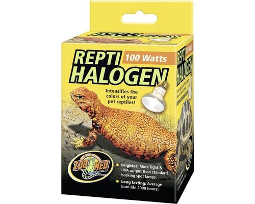 Spot halogène Repti, 100 W