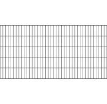 Clôture à grillage double 200 x 80cm, anthracite