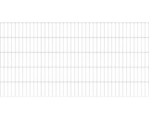 Doppelstabmatte 6/5/6 200x100 cm, feuerverzinkt