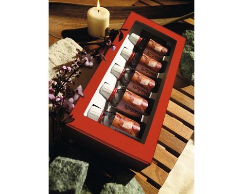 Coffret cadeau pour sauna 5 parfums de 100ml chacun
